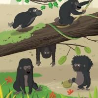 Je lis bientôt_Le gorille